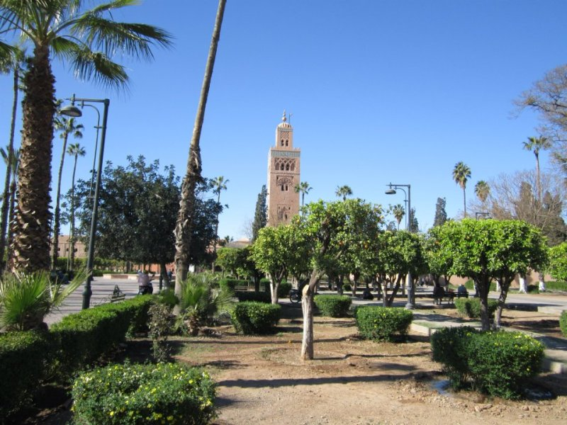Don't pict the oranges! The Garden of the Koutoubia.