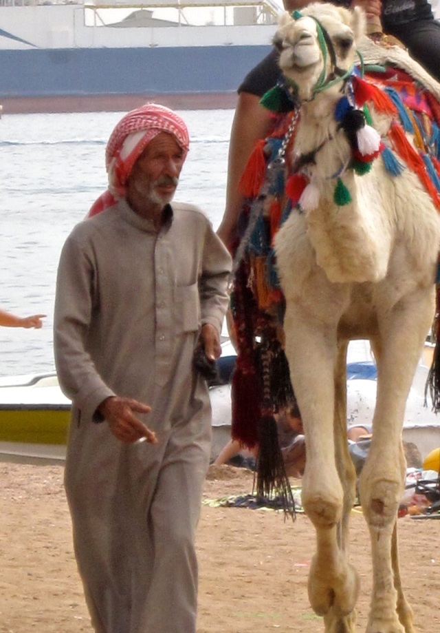 For a few dinars you can trot along the beach. For even more you can catch a camel trek into the interior of Jordan